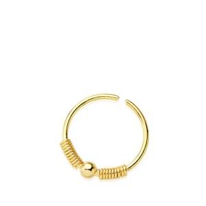 Piercing Oro Nariz